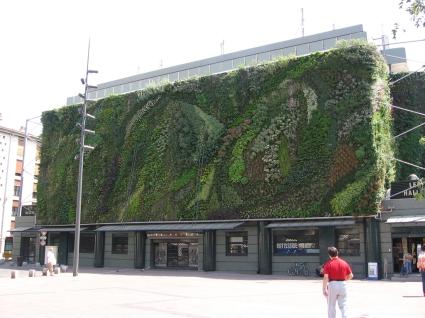 Mur_vegetal_avignon_jour1